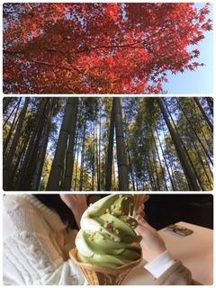 秋の京都遠足.jpeg